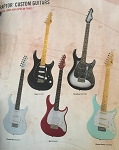 Peavey Raptor Plus Custom Guitars